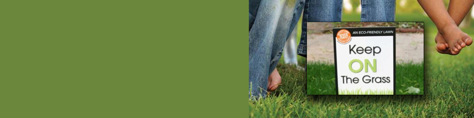 Manage a Chemical-Free Lawn